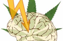Drawing of a brain, a lightening bolt and a marijuana leaf.