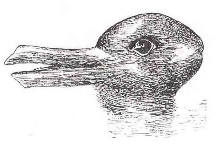 Image shows the duck/rabbit optical illusion.