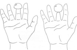 Diagram of the Shrunken Finger illusion.