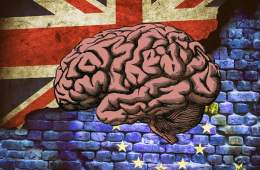 Image shows the union flag, the EU flag and a brain.