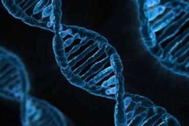 Image shows 3 DNA strands.