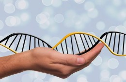 Image shows a person holding a DNA double helix.