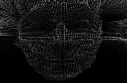 Image shows a computerized face.