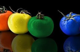 Image shows different colored foods.