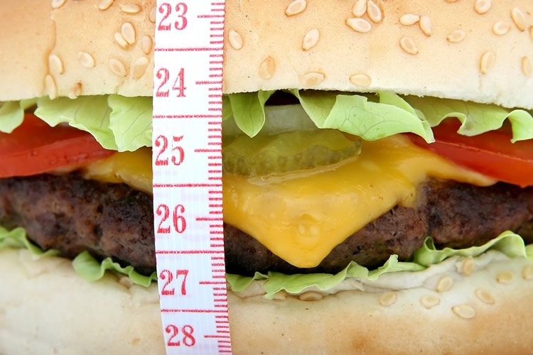 Image shows a cheese burger.