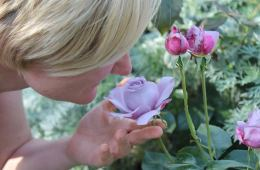 Image shows a woman smelling a rose.