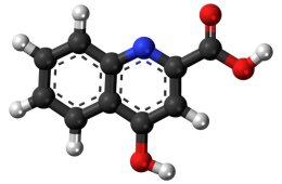 Image shows a stick and ball model of kynurenic acid.