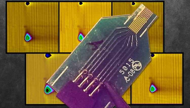Image shows the dopamine sensor.