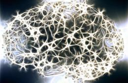 Image shows a brain network.