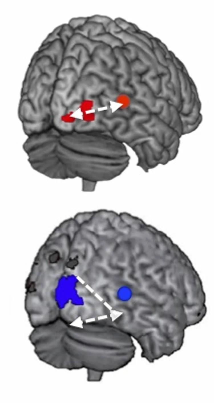 hearing reading neurosciencenews - Neuroscience News