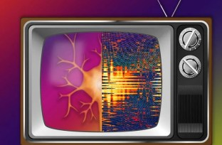 Image shows neurons on a TV set.