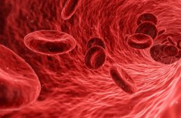 Image shows a drawing of blood cells.