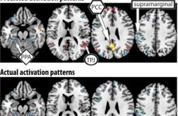 thoughs archives neuroscience news