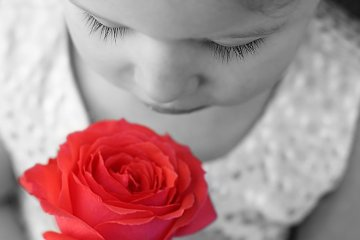 Image shows a girl sniffing a rose.