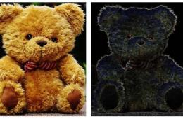 Image shows two teddy bears.