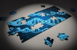 Image shows a dna stand and a jigsaw.