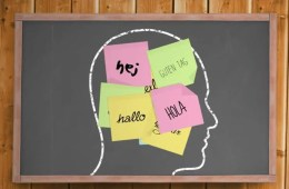 """Image shows a head with post-it noted stuck on it. The notes read """"hello"""" in different languages."""