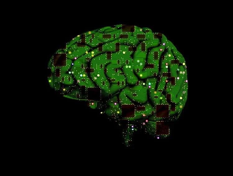 a computer chip brain