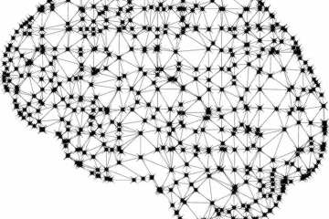 Image shows a brain made up of connected networks.