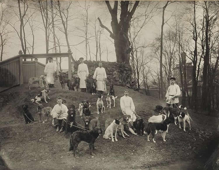 pavlov, his team and dogs are shown
