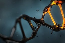 Image of a DNA strand.