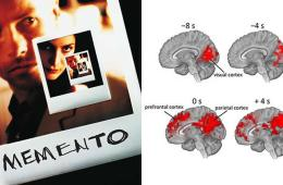 movie poster and brain scans
