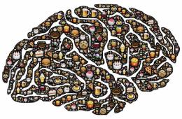 a brain made up of food images