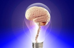 A brain is shown inside of a lightbulb.