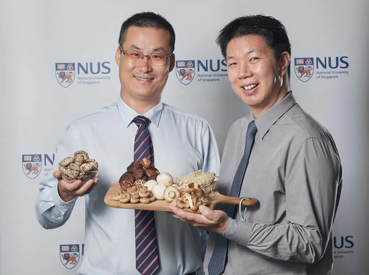 the researchers are photographed holding a plate of mushrooms