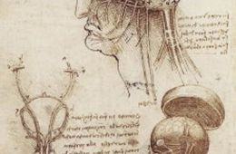 This is da Vinci's anatomy of the brain sketch