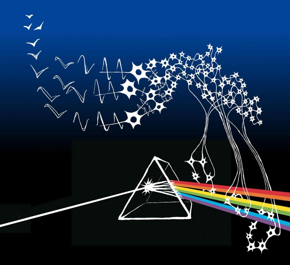 This shows a prism and neurons