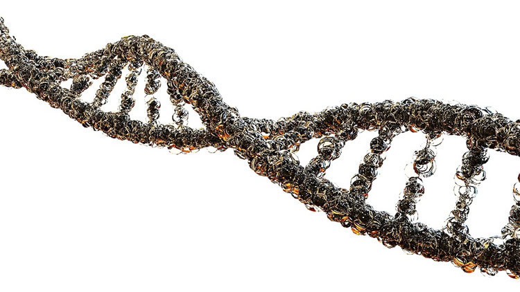 a dna strand is shown