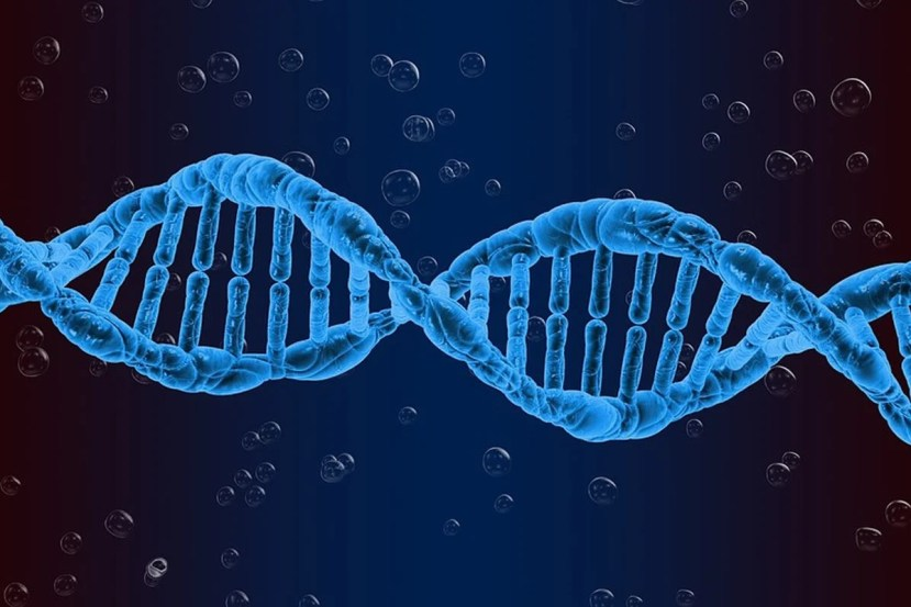 This is a DNA strand