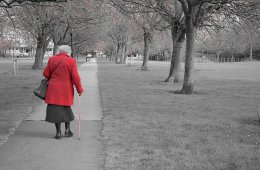 This shows an old lady walking in the park