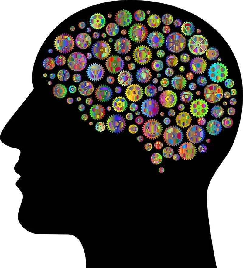 First evidence of immune response targeting brain cells in autism - Neuroscience News