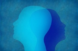 This shows two heads against a blue background