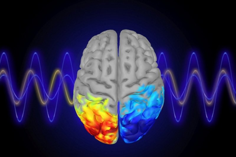 Controlling attention with brain waves - Neuroscience News