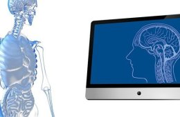 This shows a skeleton and a computer screen with a brain on it