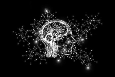 This shows a brain and a network