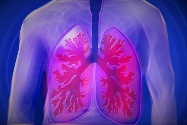 This shows lungs