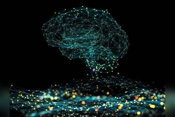 This shows a computerized brain