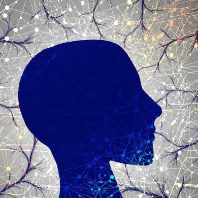 This shows the outline of a head and neurons