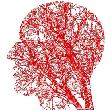 This shows a head made of blood vessels