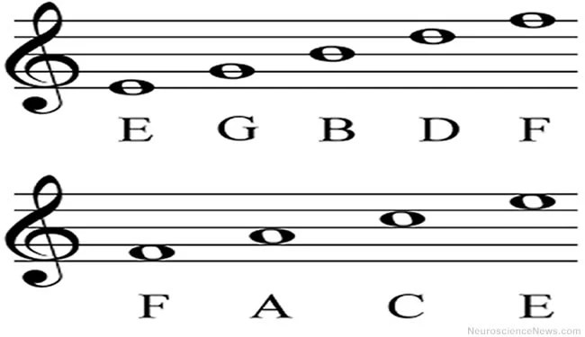 c language basics pdf notes
