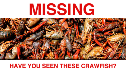 Distraught crawfish asks for public's help with missing persons cases