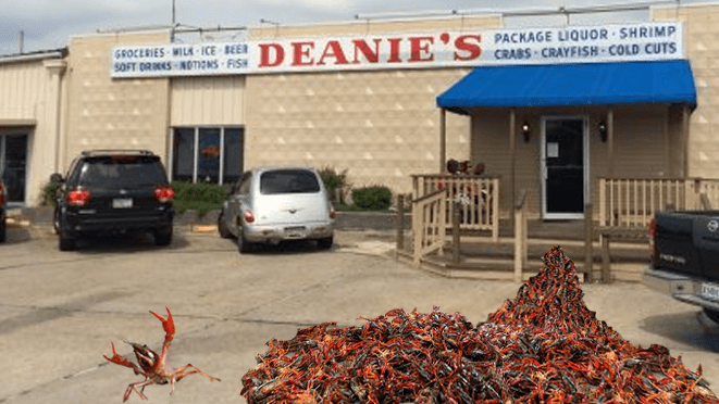 Oppressed crawfish freed by animal rights activists in Bucktown