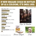 New Orleans news - Neutral Ground News Website Voting Poll