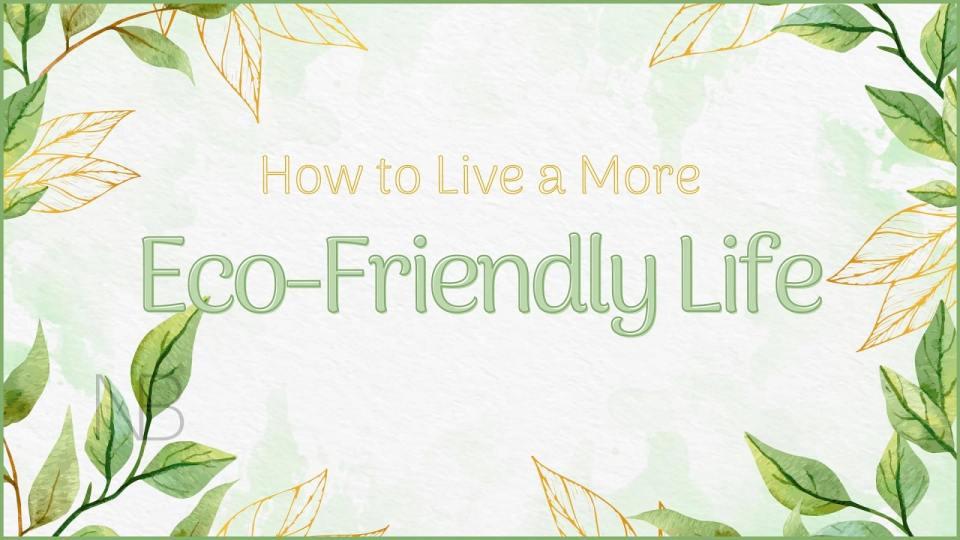 How to live a more eco-friendly life - Neutrino Burst
