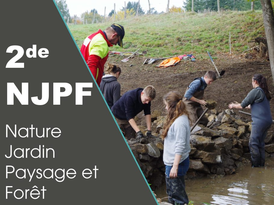 formation seconde NJPF
