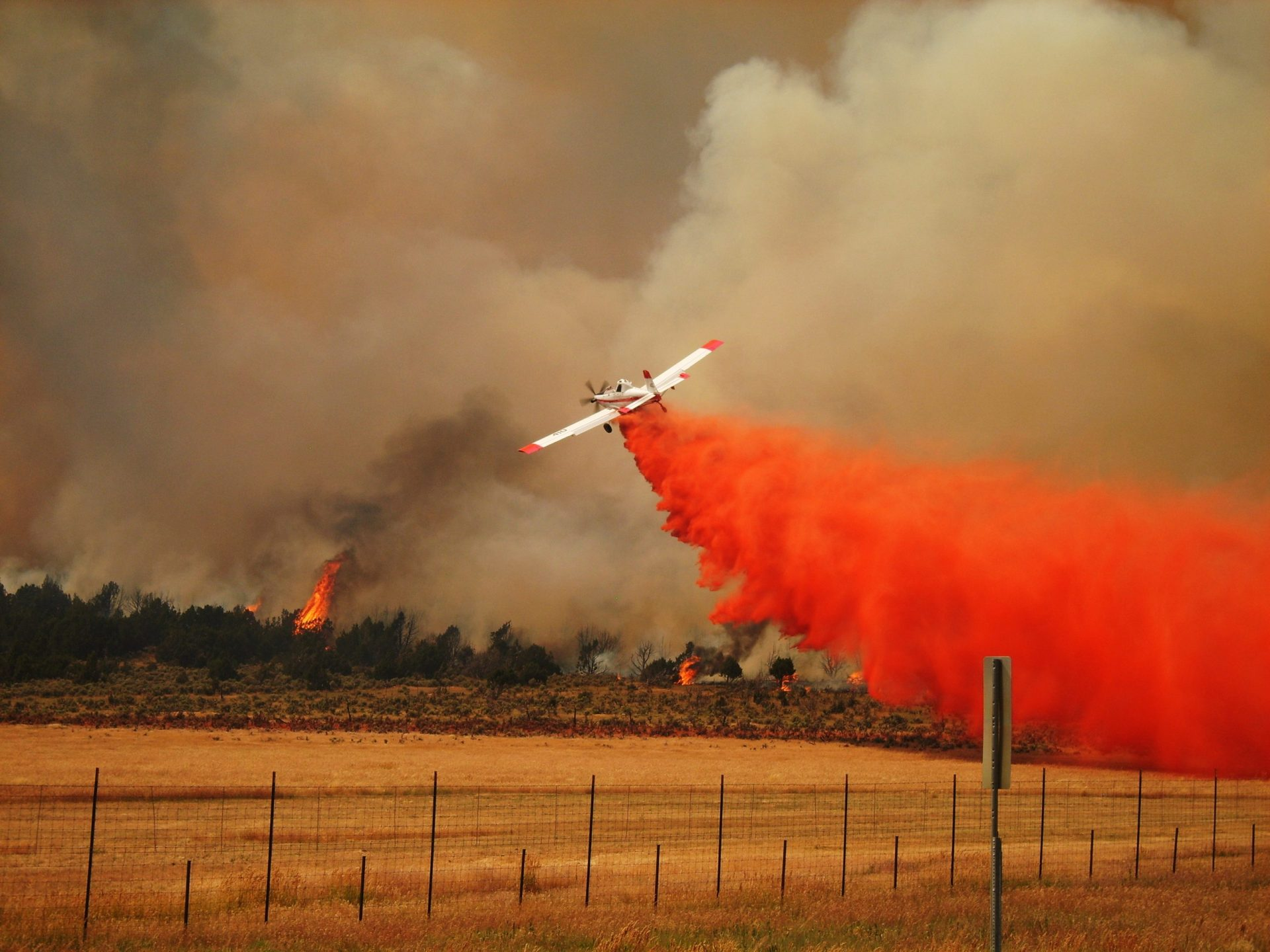 A SEAT drops fire retardant. Image: Keith Hackbarth